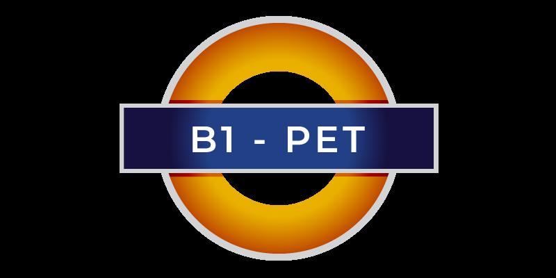 YL B1 PET corsi di inglese