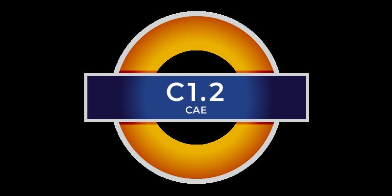 YL C1.2 CAE corsi di inglese